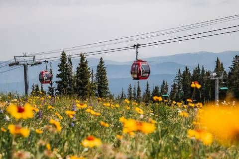 What's new at Aspen Snowmass for the coming summer.